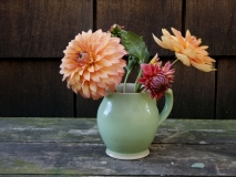 Peach Dahlias