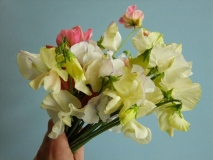 Sweet Pea Bouquet