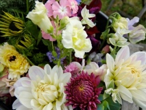 Summer flowers, dahlias
