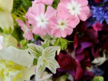 Cumbrian grown wedding flowers, pink, white, plum, blue