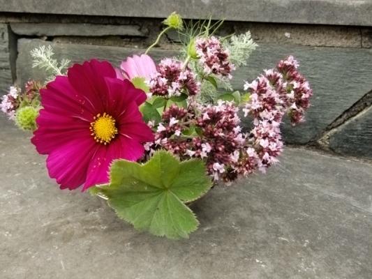 Vintage Style British Flowers