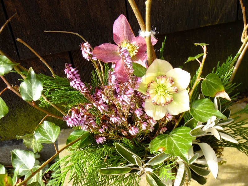 Cumbrian Flowers