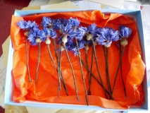 dried cornflowers for wedding hair