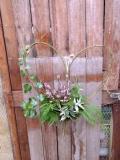 Spring British Flowers
