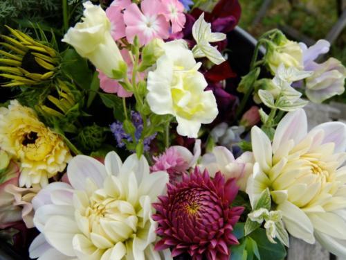 British Grown Seasonal Flower
